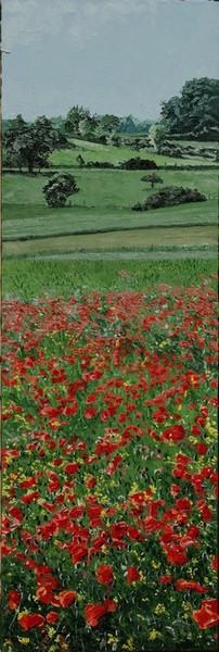 Du côté de Molliens au Bois, champ de coquelicots. 2010. (120cmx40cm)