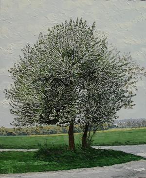 Merisier en fleurs, Béhencourt. 2011. 73cmx60cm